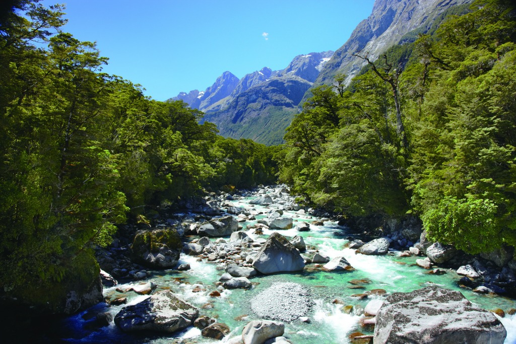 Impressive picture of the Upper Hollyford River