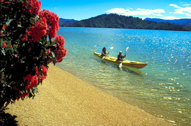 Capture views of the Pohutukawa (also known as New Zealand Christmas tree) dotted about the golden sand beaches.