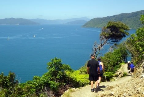 Great walks hiking Queen Charlotte track