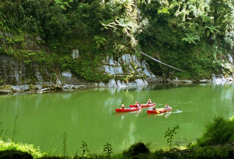Great Walks Whanganui River Trip