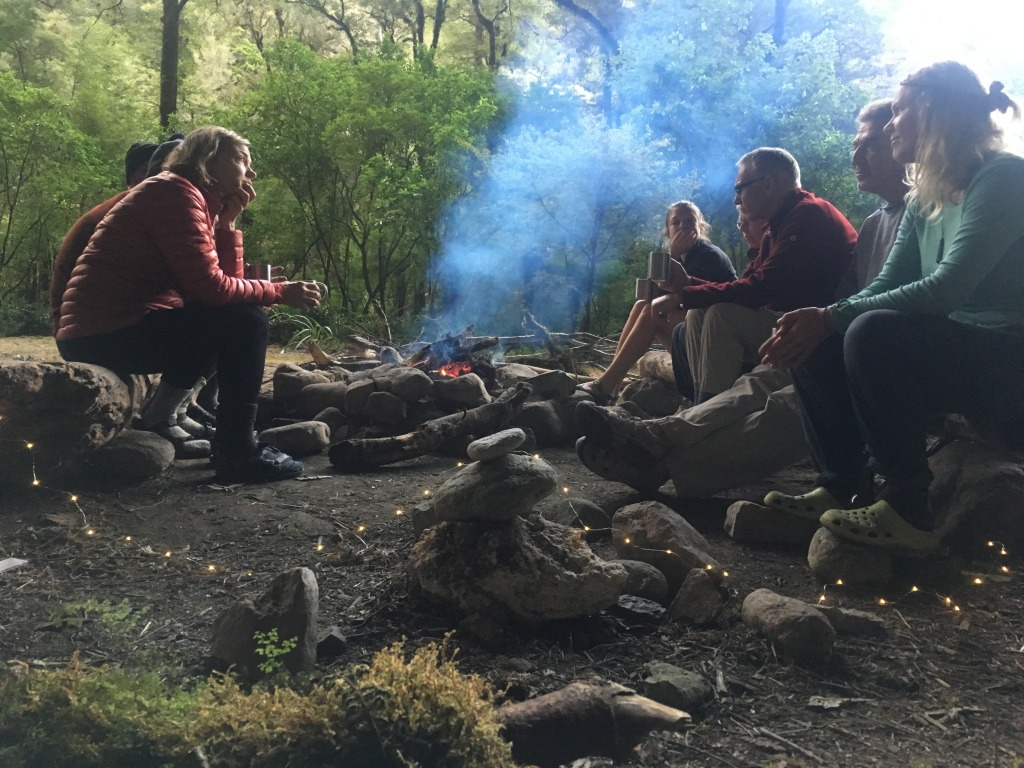 We use a mix of camp fire cooking and portable (MSR/Primus) stoves on multi day hikes.